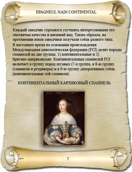 история породы папийон