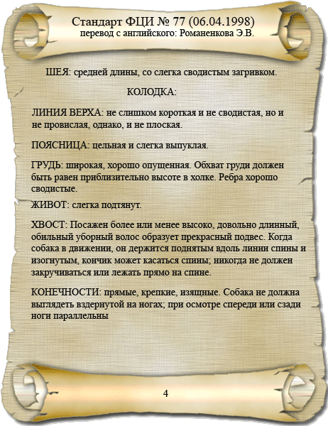 стандарт ФЦИ папийон